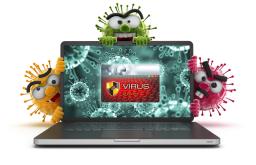 Niagara Virus Removal